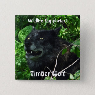 Timber Wolf Wildlife Photo pin