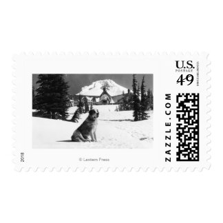 "Timberline Lodge and ""Lady"" the owner's Postage Stamp"