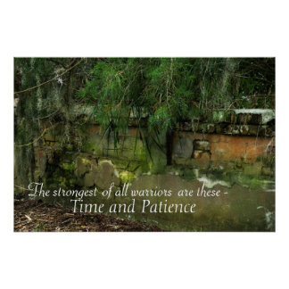 Time and Patience Inspirational Poster