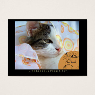 Time Heals Life Lessons From a Cat ACEO Art Cards