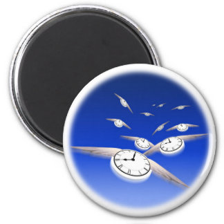Time in Flight Magnet