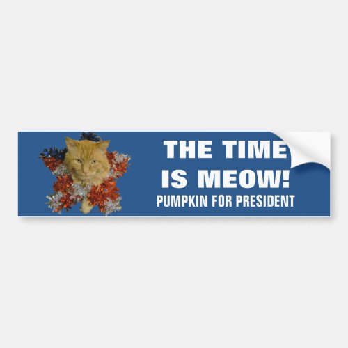 Time Is Meow 2020 Wreath Pumpkin for President Bumper Sticker