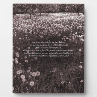 """Time Passes"" 2 Peter 3 v8-9 New Testament Garden Plaque"