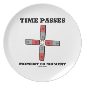 Time Passes Moment To Moment (Magnetic Quadrupole) Melamine Plate