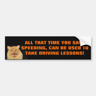 Time Saved Speeding Can Be Used On Driving Lessons Bumper Sticker