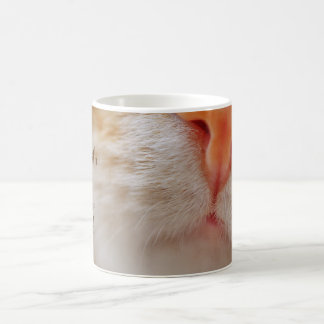 Time spent with cats is never wasted || Cat nose Coffee Mug