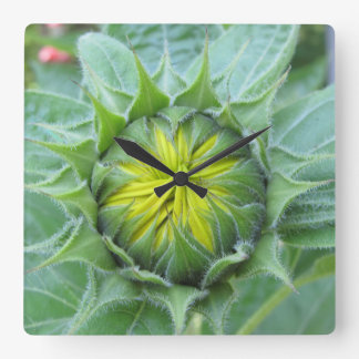 """""""Time To Bloom"""" Square Wall Clock"""