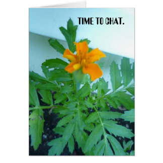TIME TO CHAT. GREETING CARDS