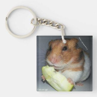 Time to find some lunch! keychain