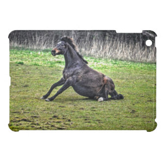 Time To Get Up - Fun Horse Getting Up Photo iPad Mini Cover