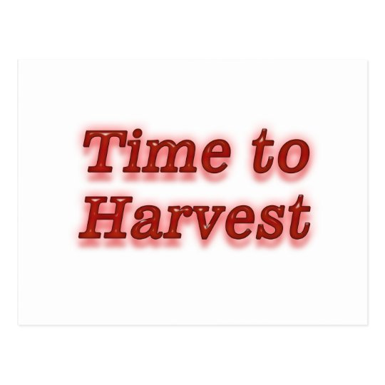 Time to harvest V1 Postcard
