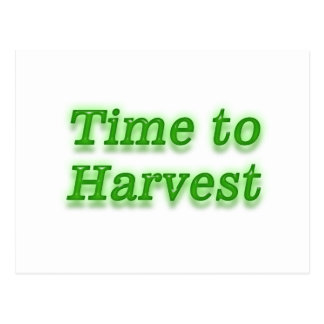 Time to harvest V3 Postcard