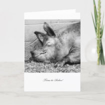 Time to Relax Pig - Blank Retirement Card