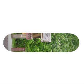 Timms Hill National Park Wisconsin Skate Board Decks