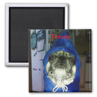 Timmy Hoodie Magnet