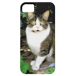 """""""Timmy"""" iPhone 5/5S Case"""