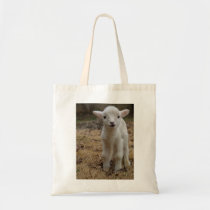 Timmy the Lamb Tote Bag