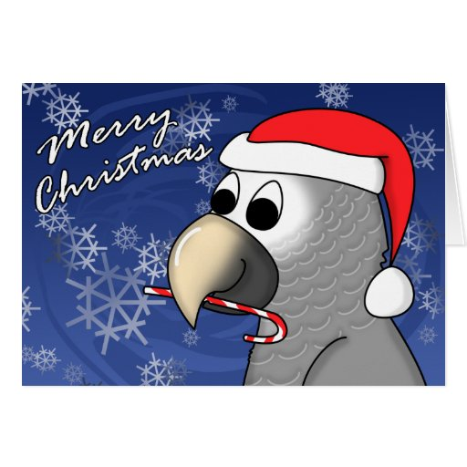 Timneh African Grey Christmas Card