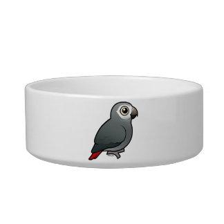 Timneh African Grey Parrot Bowl