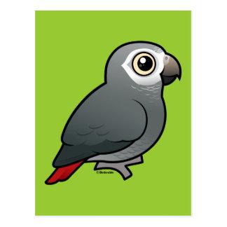 Timneh African Grey Parrot Postcard