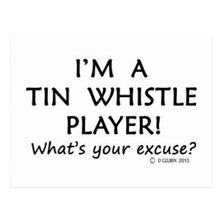 Tin Whistle Player Excuse Postcard