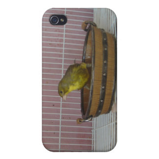 Tina de baño de antaño amarilla iPhone 4/4S carcasas