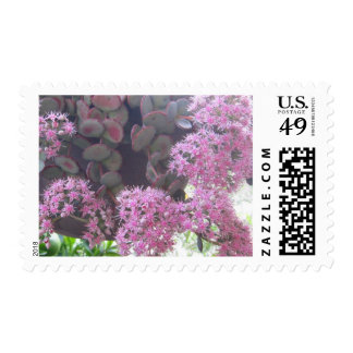 tine purple flowers postage