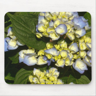 Tinged-Blue White Hydrangeas Mouse Pad