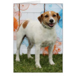 Tinker Bell - Jack Russell Greeting Card