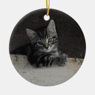 Tinker Kitten Ceramic Ornament