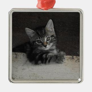 Tinker Kitten Metal Ornament