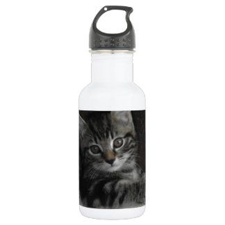 Tinker Kitten Water Bottle