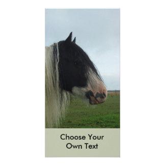 Tinker Profile Portrait Photo Card