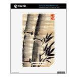 Tinta de bambú en arte del papiro NOOK color skins