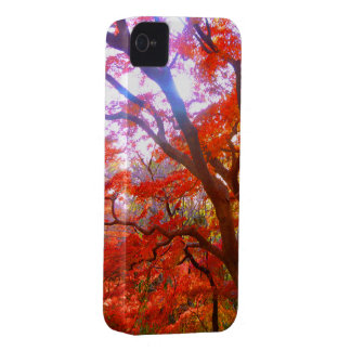 Tinted autumn leaves iPhone 4 case