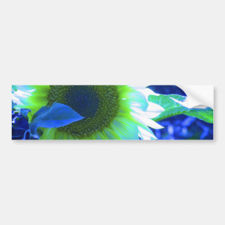 Tinted Blue Sunflower Bumper Sticker