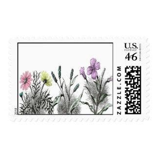 tinted flowers postage stamp