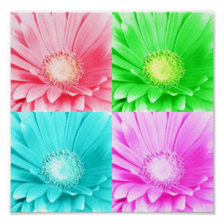 Tinted Gerbera Daisy Canvas Poster