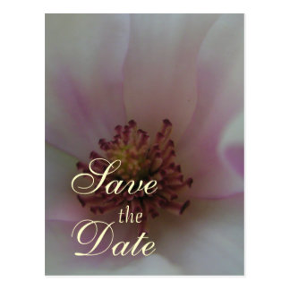 Tinted Heart Wedding Flower Save The Date Postcard