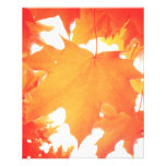"Tinted Orange Maple Leaf 4.5"" X 5.6"" Flyer"