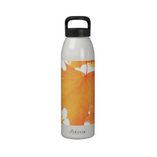 Tinted Orange Maple Leaf Reusable Water Bottle