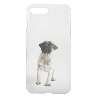 Tiny And Cute Pug Puppy iPhone 8 Plus/7 Plus Case