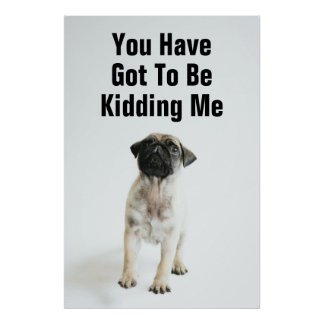 Tiny And Cute Pug Puppy Poster