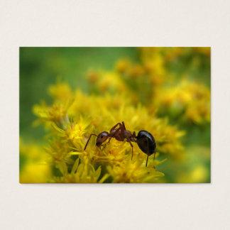 Tiny Ant on Goldenrod ATC Business Card