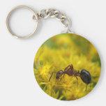 Tiny Ant on Goldenrod Basic Round Button Keychain