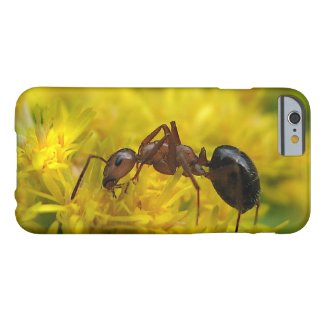 Tiny Ant on Goldenrod iPhone 6 Case