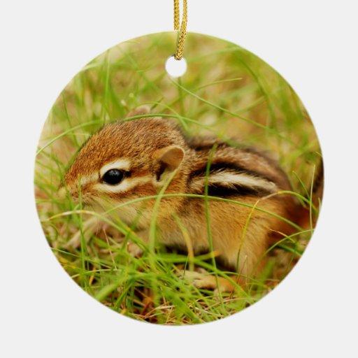 Tiny Baby Chipmunk Christmas Ornament