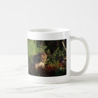 Tiny Baby Lynx Classic White Coffee Mug