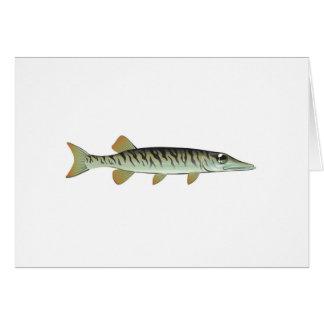 Tiny baby muskie Vector Art Fish Farm Card