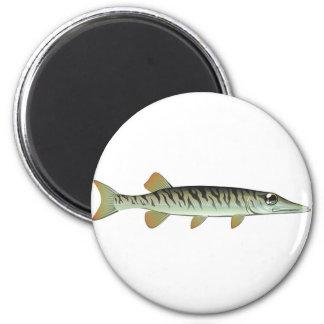 Tiny baby muskie Vector Art Fish Farm Magnet